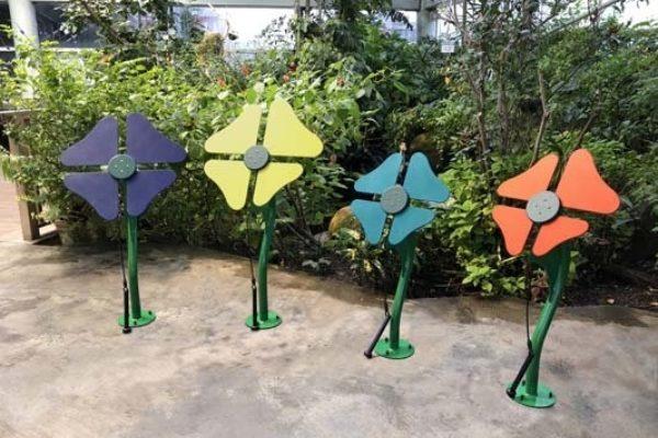 Flowers Ensemble